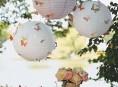 imagen Decora tu fiesta al aire libre con mariposas