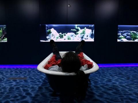 juegos-relax-gym-google-09