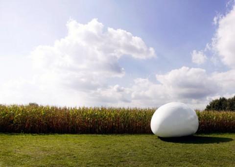 Un huevo por casa-09