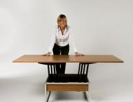 imagen Trendy la mesa de living funcional
