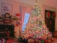 imagen Decorando el árbol de navidad