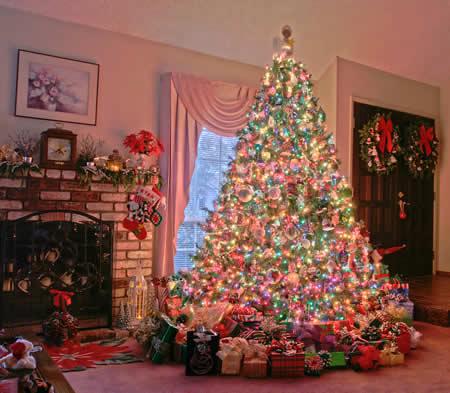 Decorando el rbol de navidad