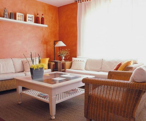 casual-traditional-living-room-designs-6