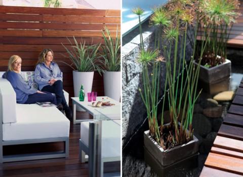 Un jard n interior minimalista for Decoracion con plantas para exteriores