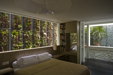 La naturaleza en el hogar2