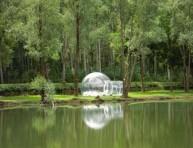imagen Casas: conoce a Bubble Tree