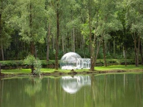 Casas conoce a Bubble Tree4