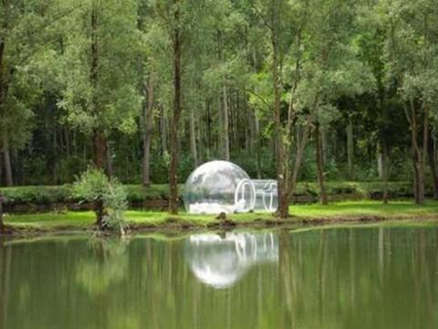 Casas conoce a Bubble Tree4