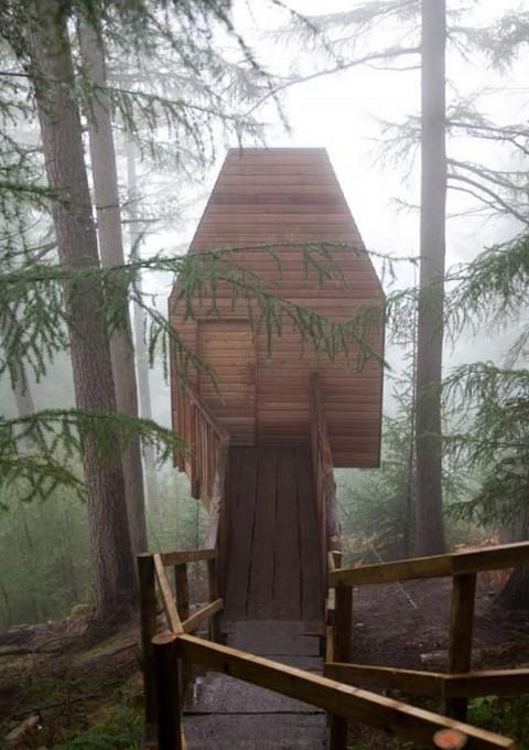 Casas la casa del árbol1