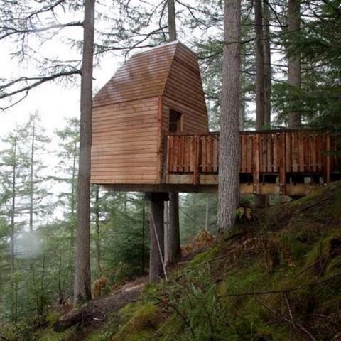 Casas la casa del árbol2