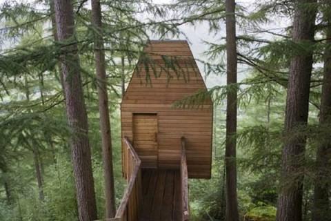 Casas la casa del árbol3