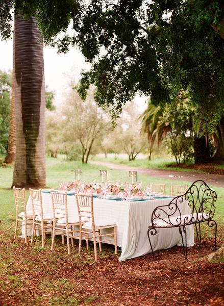 Decoracion_ Rosa y azul para una comida en el jardín-06