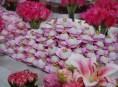 imagen Una tarde de té en rosa