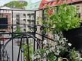 imagen Un apartamento con encanto propio y decoracion impactante