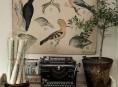 imagen Detalles bonitos para la decoración del hogar