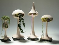 imagen Plantas de interior que purifican nuestro espacio