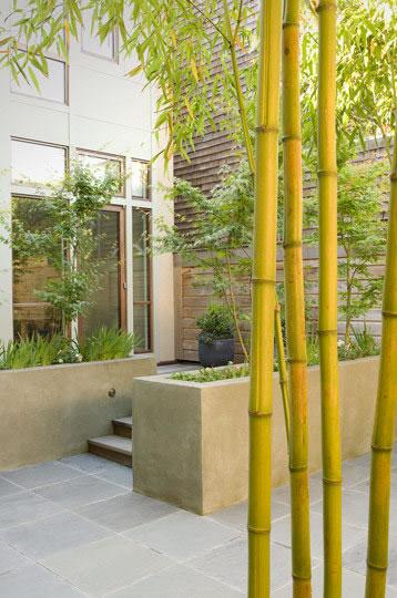 Bambu Decoracion Jardin ~ Bamb? Usos En El Jardin La Decoraci?n Y La Arquitectura Pictures to
