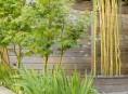 imagen Decoración de exteriores: Un jardín de ciudad