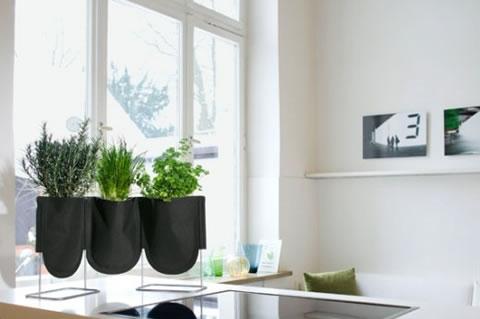 Decorar utilizando mini jardines for Articulos para decorar interiores