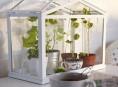 imagen Mini invernaderos de Ikea