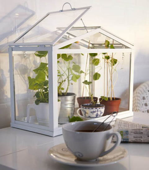 mini invernaderos de ikea. Black Bedroom Furniture Sets. Home Design Ideas