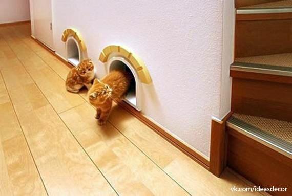 Originales ideas para tus gatos - Ideas originales casa ...