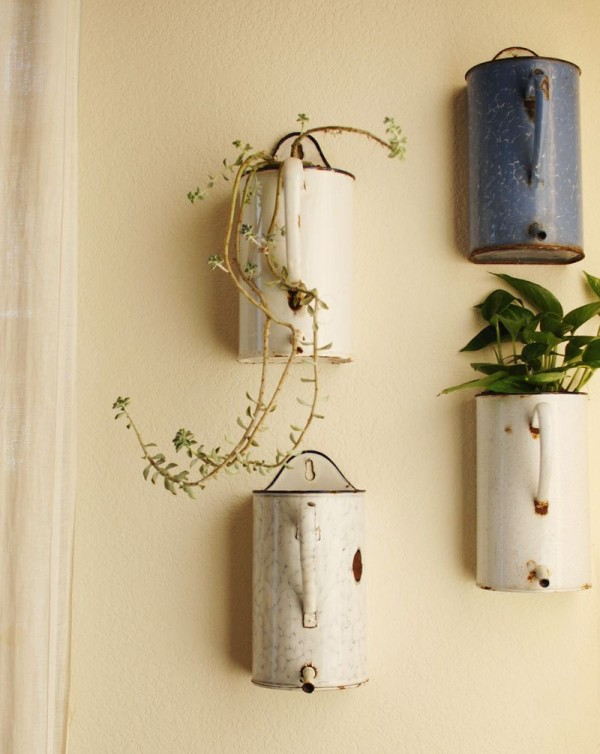 Cinco consejos para decorar con plantas 2