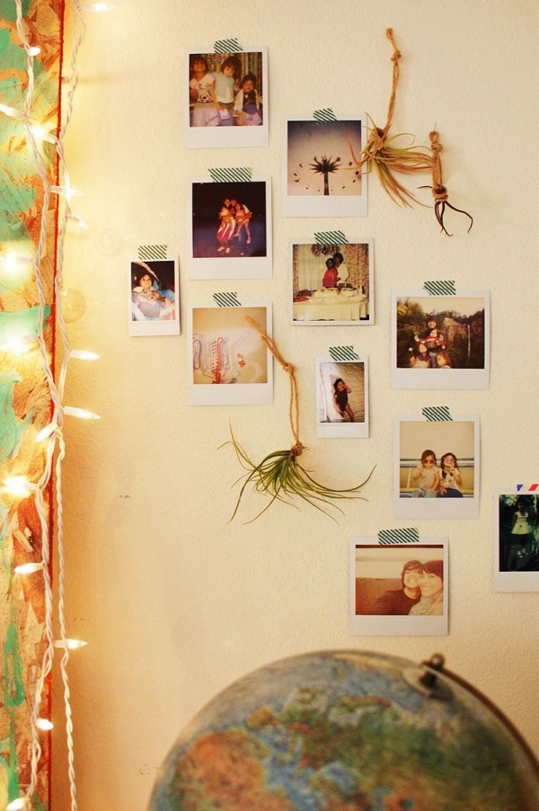 Cinco consejos para decorar con plantas - Ideas fotos pared ...