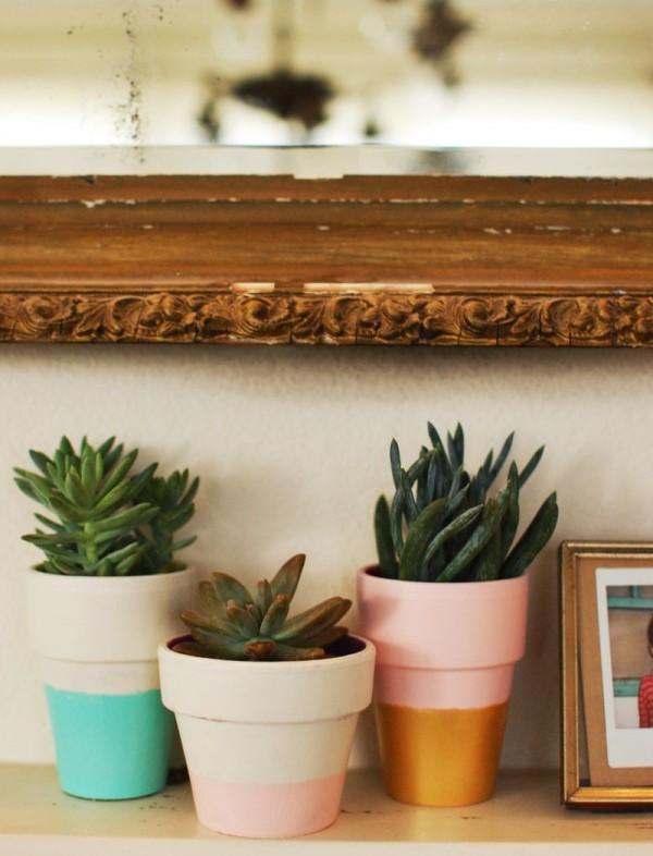 Cinco consejos para decorar con plantas 4