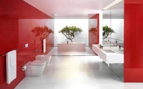 Baños a todo color 6