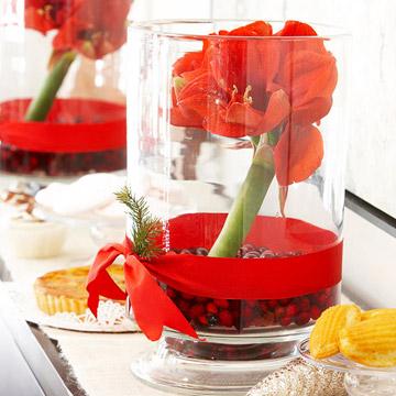 Esta Navidad decora tu casa con amaryllis 1