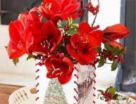 imagen Esta Navidad decora tu casa con amaryllis