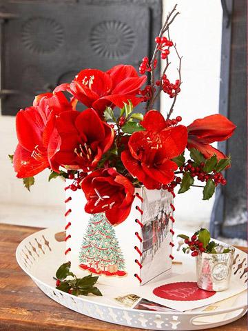 Esta Navidad decora tu casa con amaryllis 2