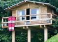 imagen Una mini-casa rústica junto al bosque