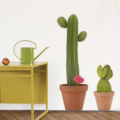 Cactus decorativos for Utilisima decoracion de interiores