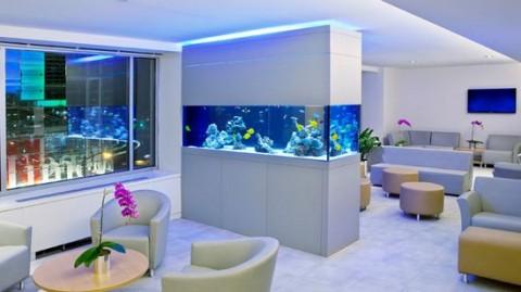 Decoraci n de interiores con acuarios - Decoracion acuarios baratos ...