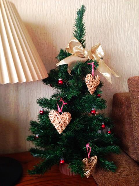 Tres peque os rboles navide os - Arboles de navidad pequenos ...