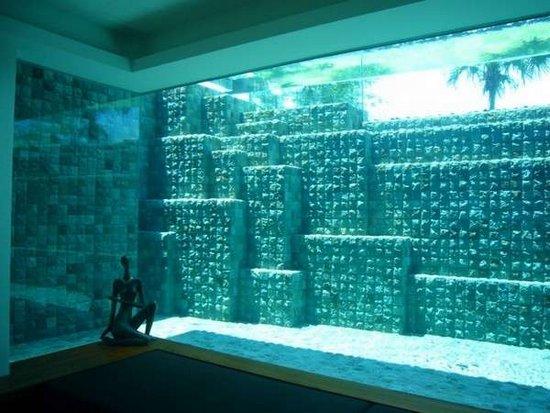 La casa ecológica 7