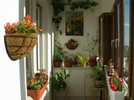 Ideas para el balcón 6