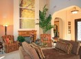 imagen Decoración de salones con plantas de interior