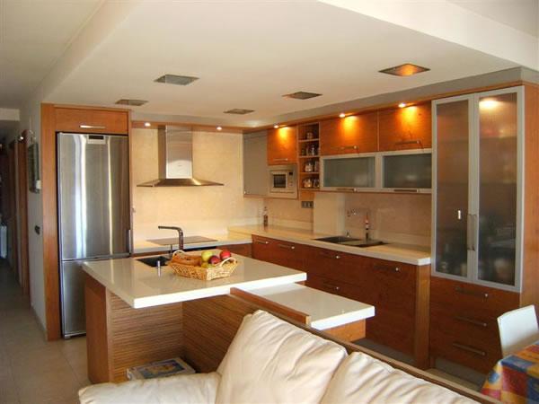 Cocinas abiertas al living for Cocinas abiertas al pasillo