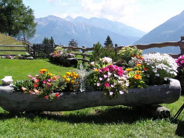 Ideas para colocar tus plantas for Jardines decorados con plantas