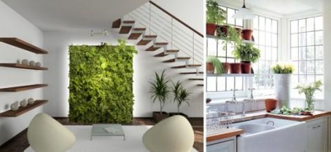 Jardines en el interior 3