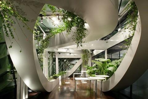 Jardines en el interior 6