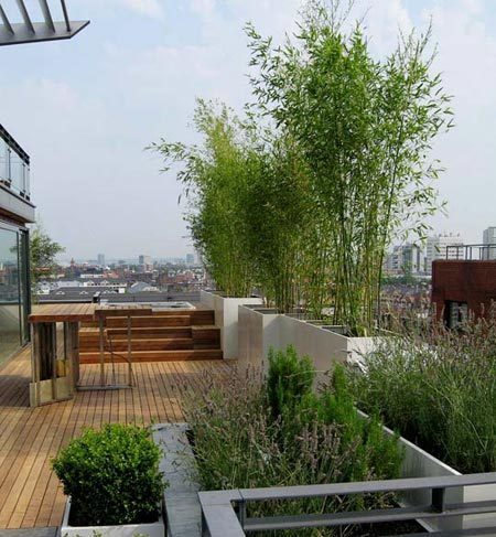 Terrazas de estilo minimalista 3