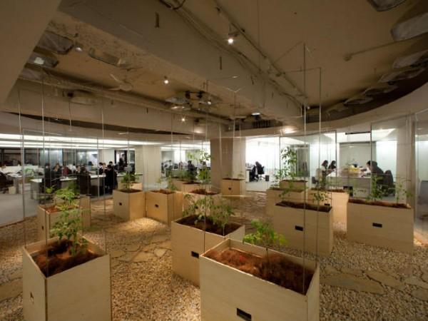 Empresas ecológicas 6