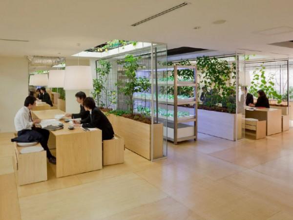 Empresas ecológicas 7