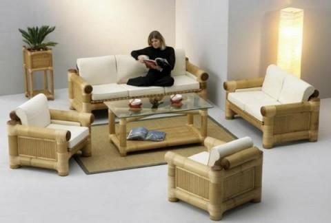 Bambú en el interior 2