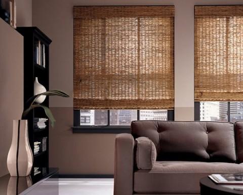 Bambú en el interior 3