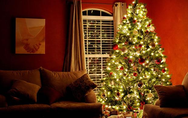 C mo decorar un rbol de navidad parte i for Como decorar un arbol de navidad